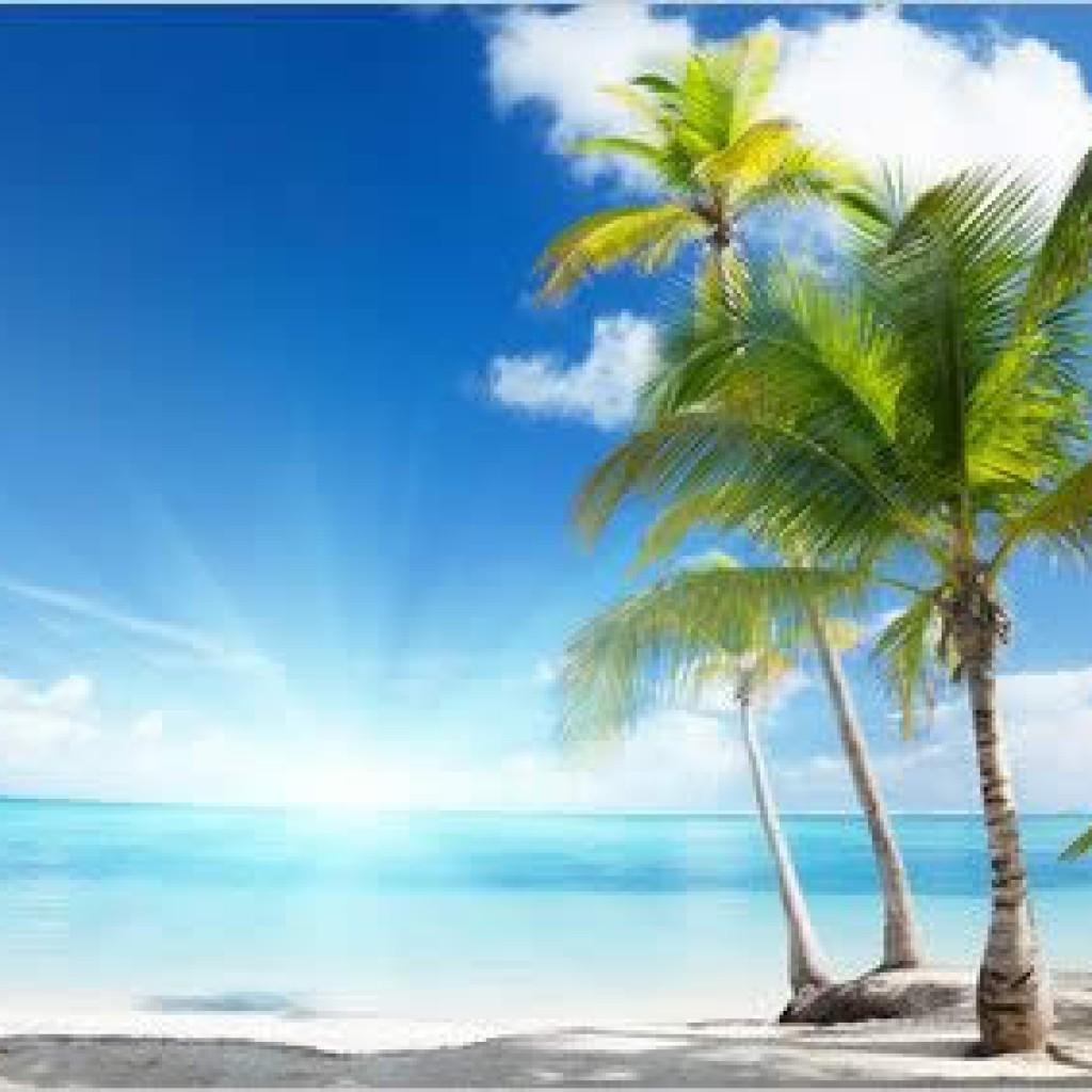 Activité du tourisme en recul en 2015